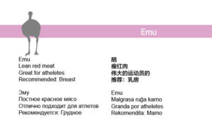 mm-phi-booklet8